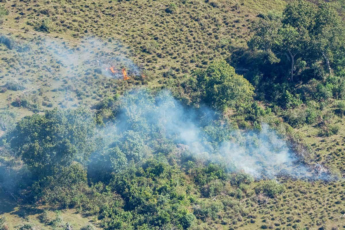 rennender Wald in Mato Grosso do Sul, Brasilien (c) Jaime Rojo / WWF-US