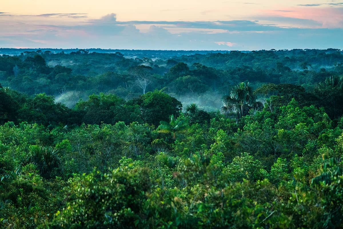 Luftaufnahme Sonnenuntergang über dem Amazoans in La Chorrera, Kolumbien