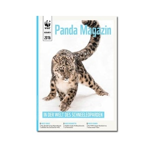 Pandamagazin Schneeleopard