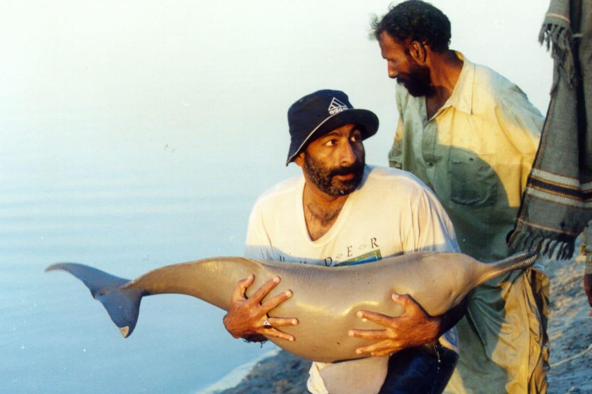 Rettung eines Indus-Flussdelfins