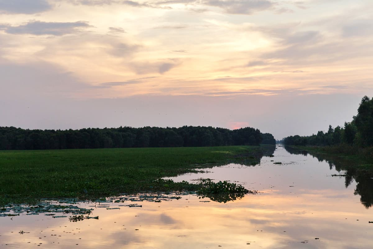 Sonnenuntergang über dem Tram Chim National Park
