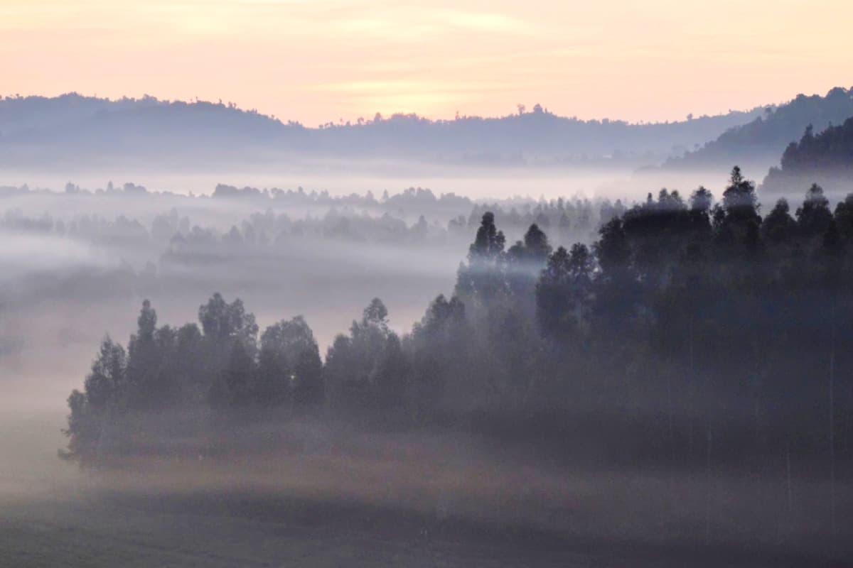 Sonnenaufgang über den Virunga-Bergen