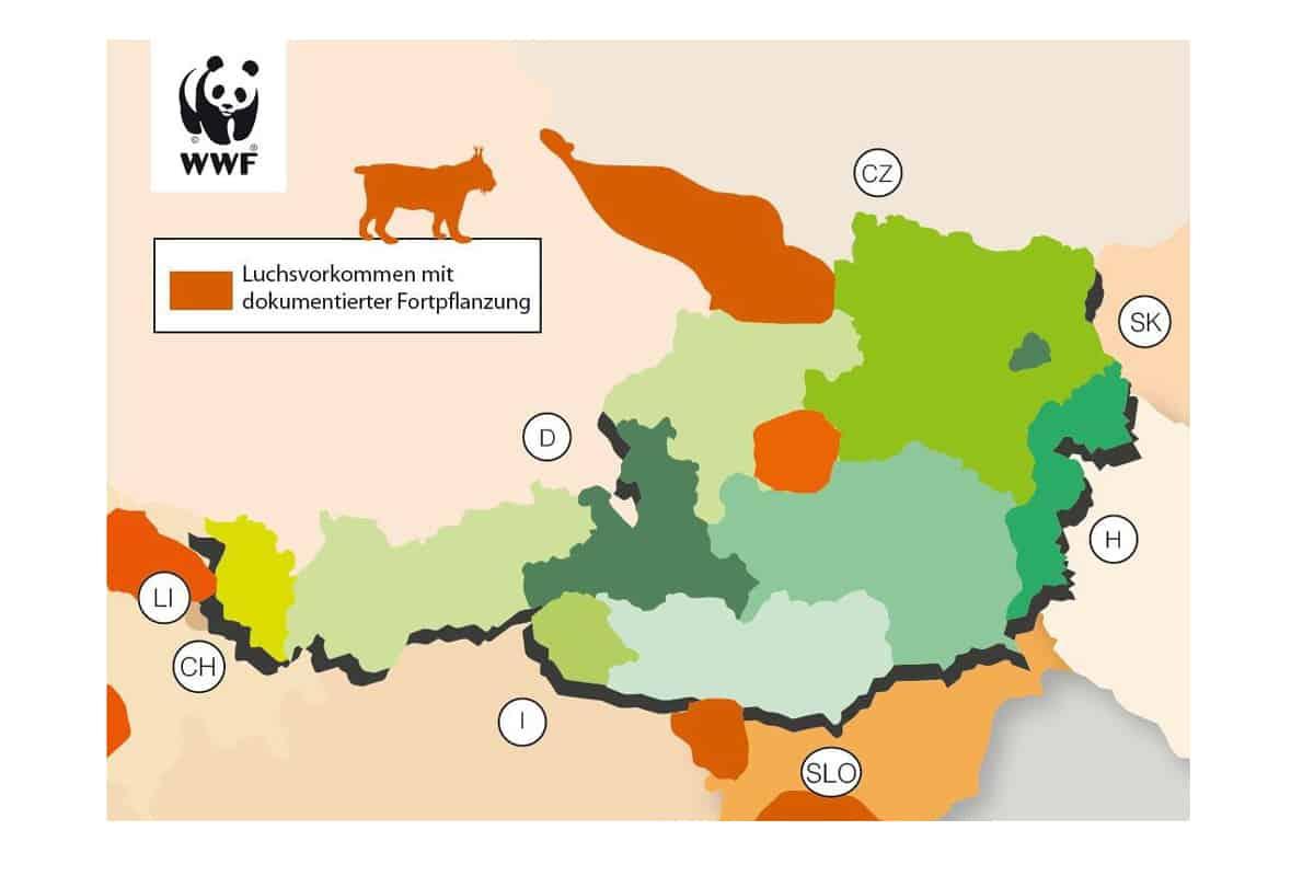 Karte Luchsvorkommen in Österreich