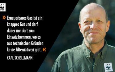 WWF: Keine Luftschlösser beim erneuerbaren Gas