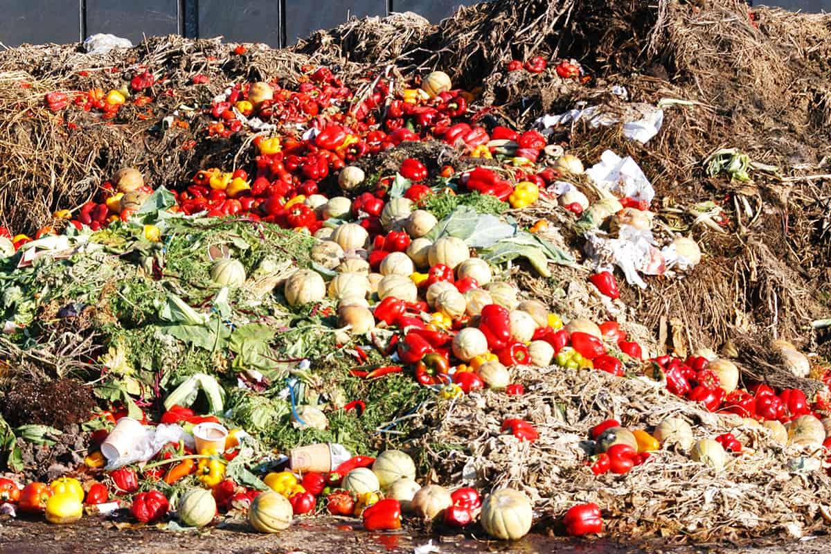 Lebensmittel Müllberg