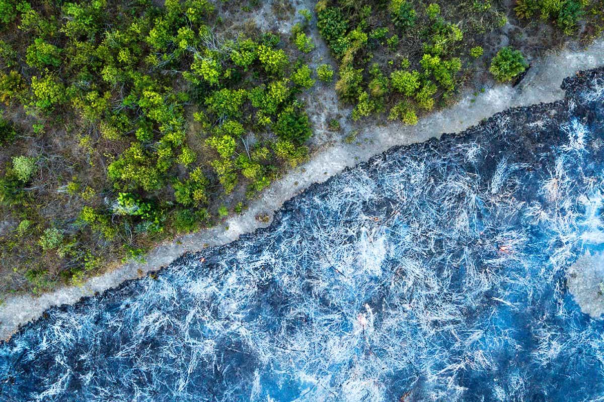 Luftaufnahme eines Waldes mit einer Hälfte gesund und einer Hälfte brennend in Brasilien