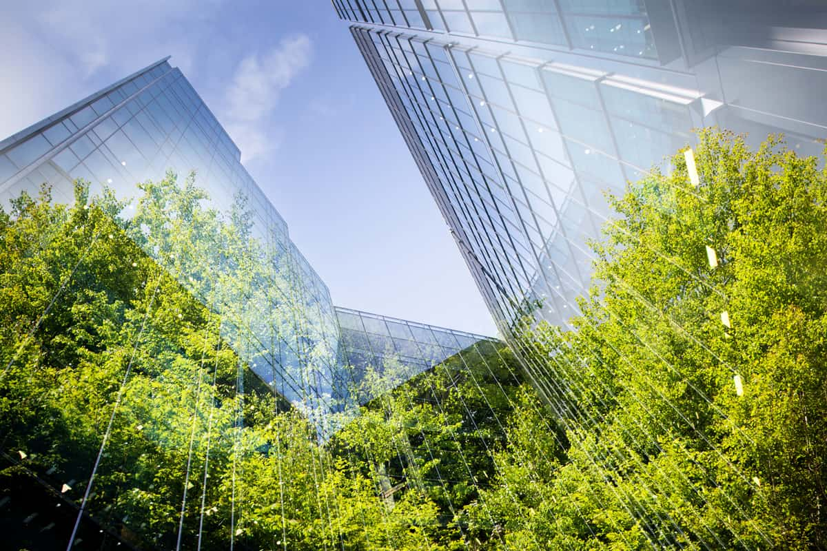 Grüne Bäume spiegeln sich in Wolkenkratzer