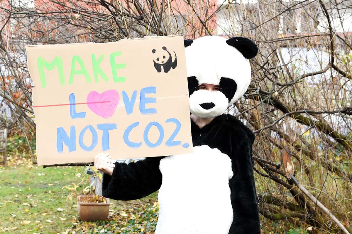 WWF Klimastreik