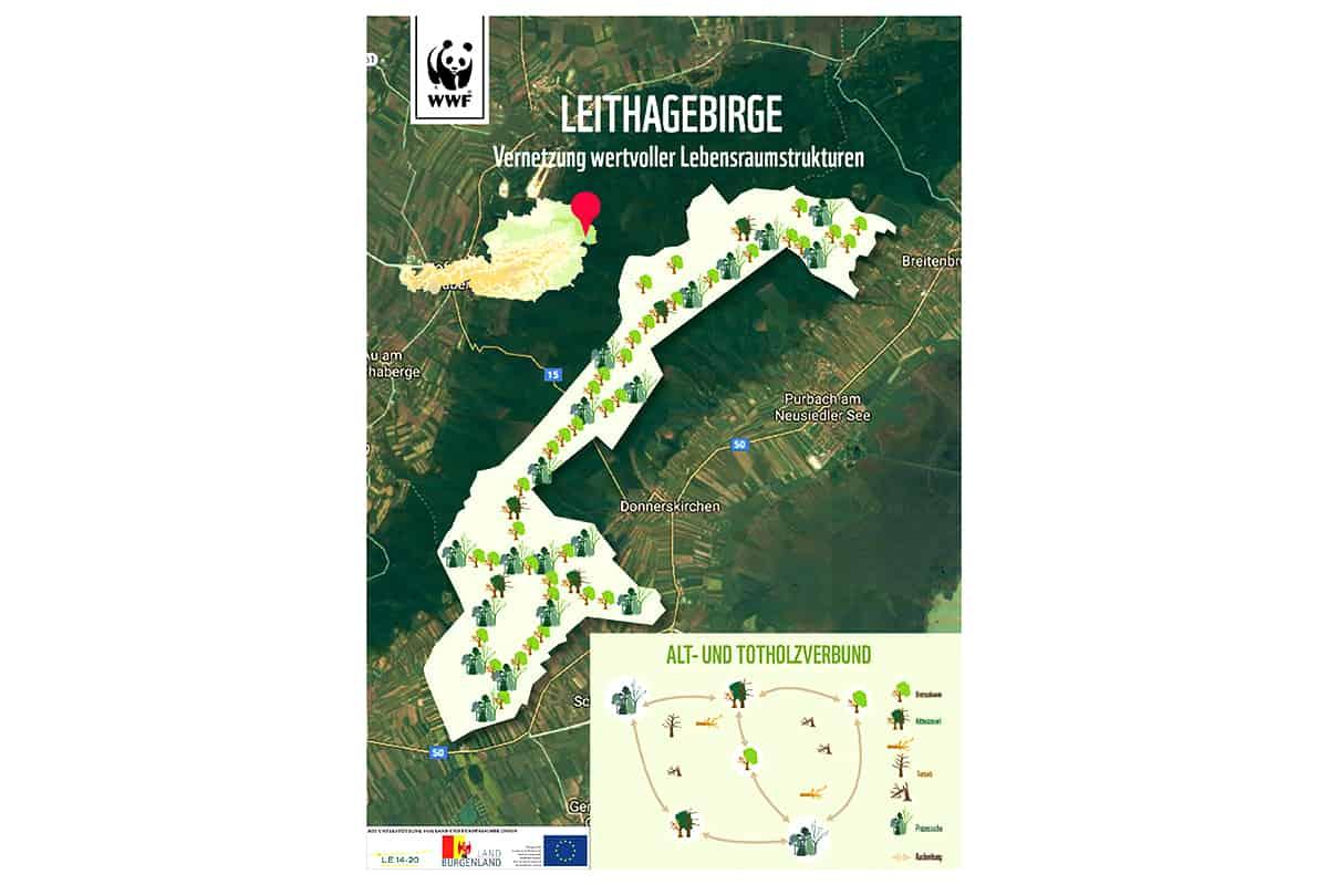 Grafik Leithagebirge