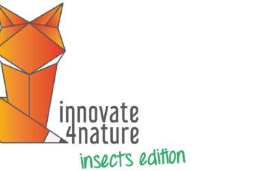innovate4nature insects edition: die Finalistinnen und Finalisten stehen fest!
