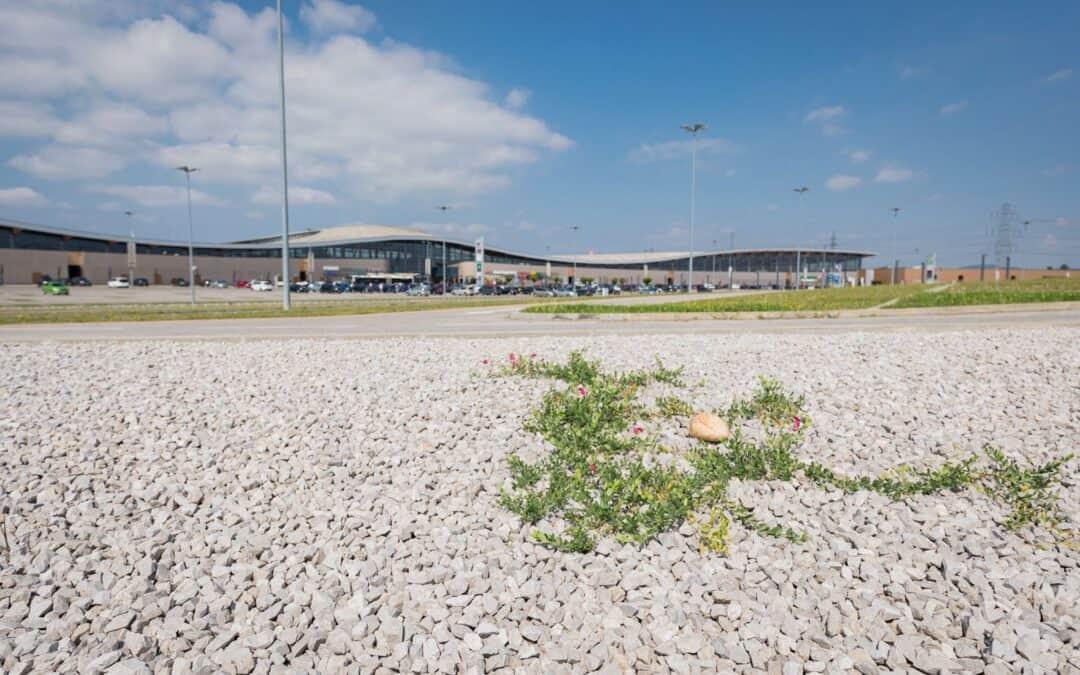 Bodenverbrauch: WWF kritisiert mutloses Raumordnungs-Gesetz in Oberösterreich