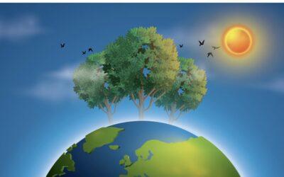 Am 5. Dezember ist Weltbodentag