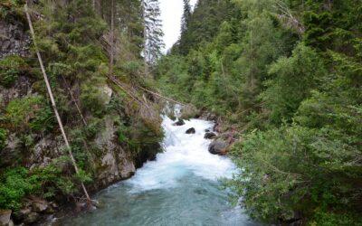 Weiteres Kraftwerk bedroht Isel-System – WWF fordert rasche Schutzgebiets-Ausweisung