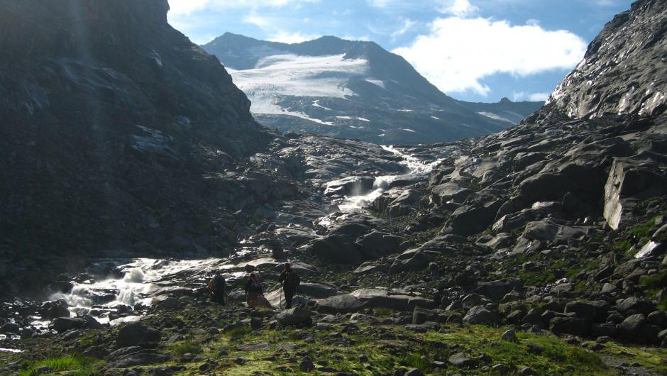 Alpine Wildnis (c) M. Zika / WWF Österreich