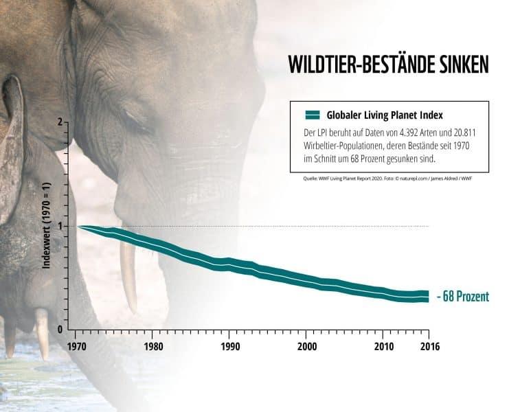 Grafik: Artenvielfalt geht zurück