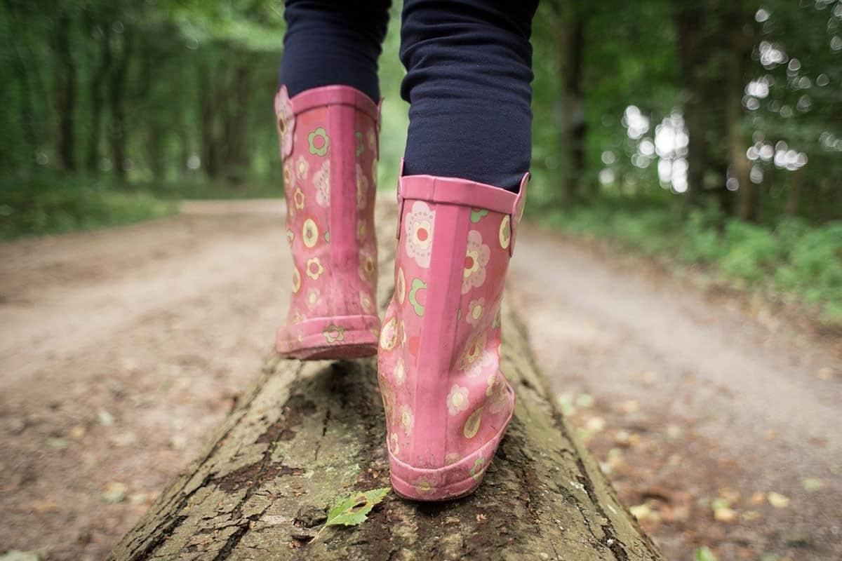Erspüre den Wald vor deiner Haustüre, © by pixabay