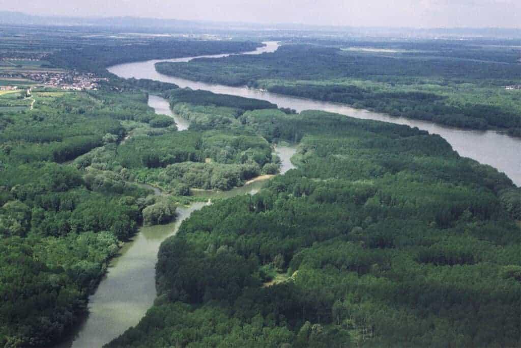 Donauauen Flugaufnahme/ © Miletich/ 4nature