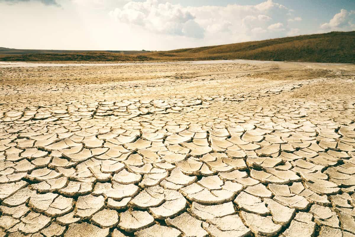 totale Dürre