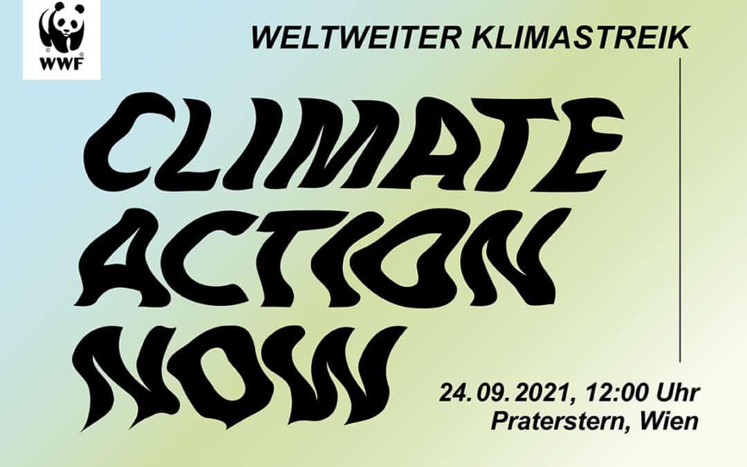 8. weltweiter Klimastreik am 24. September 2021