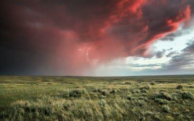 WWF zum Bericht des Weltklimarates: Alarmierender Notruf der Klimawissenschaft