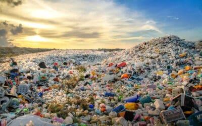 Neue WWF-Studie zeigt die unglaublichen Kosten der Plastik-Krise