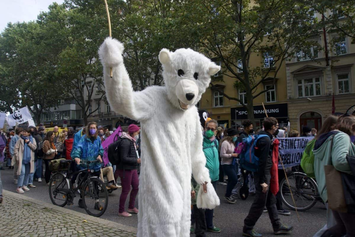 Take care for the polarbear @ WWF