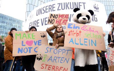 Weltweiter Klimastreik: WWF fordert Stopp von Flächenfraß