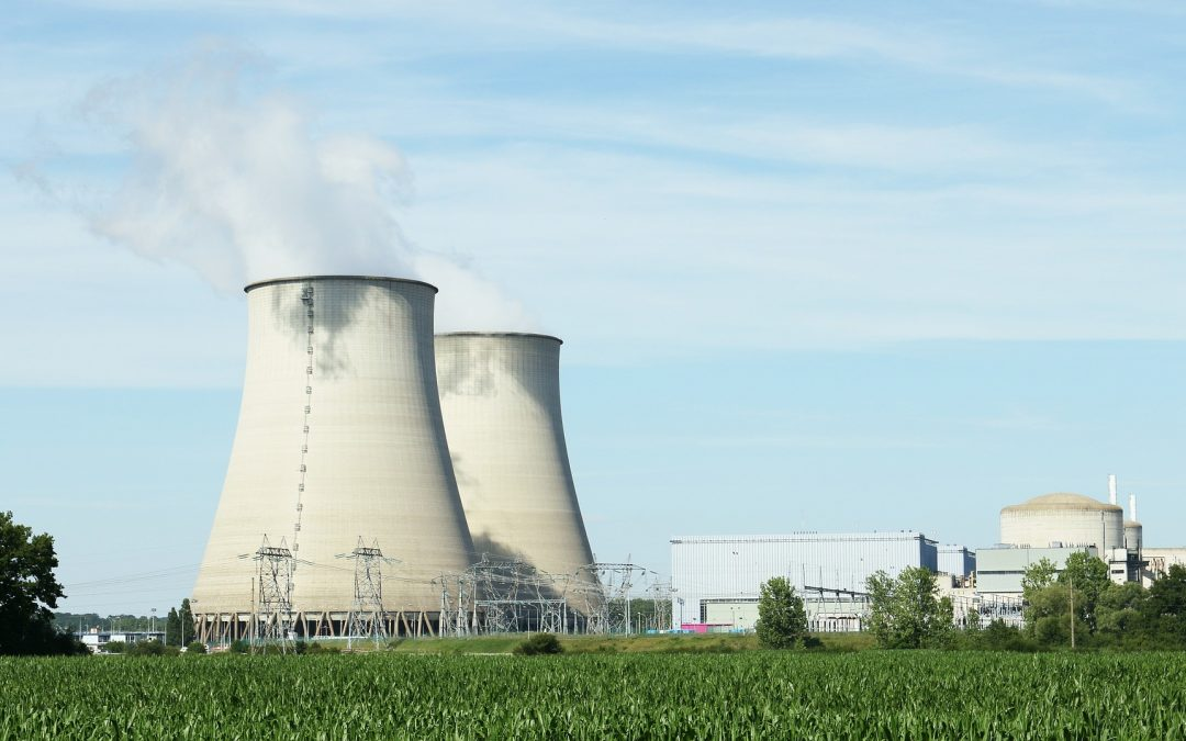 WWF: Atomenergie und Erdgas haben im Green Deal nichts verloren