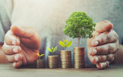 Umfrage: Klare Mehrheit fordert Pflicht zu Klima- und Naturschutz für Banken