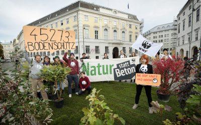 WWF-Aktion: Wiese und Bäume statt Beton!